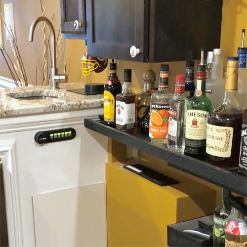 Home Bar Liquor Dispenser 6880V Series - Jermone!